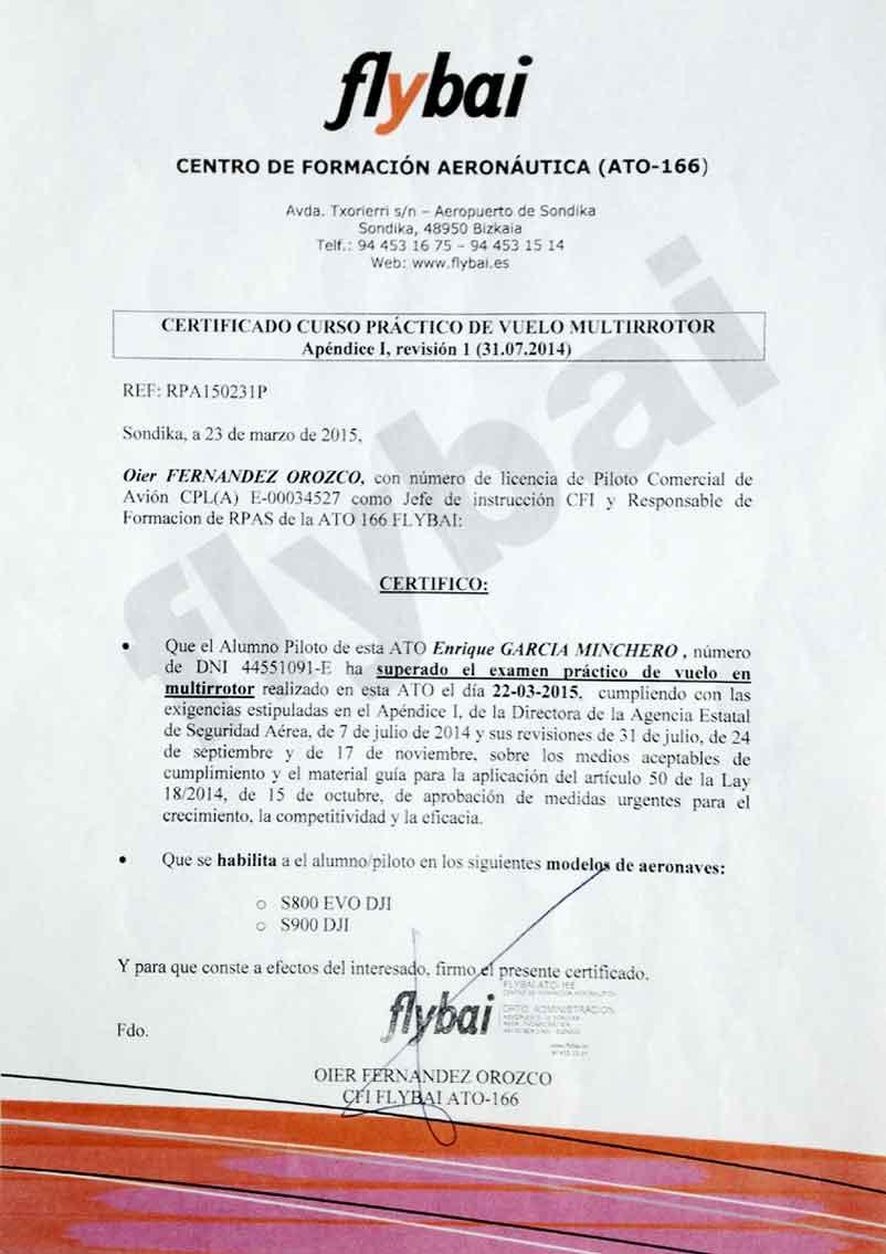 Encantador Revisión Piloto De Reanudación Regalo - Ejemplo De ...